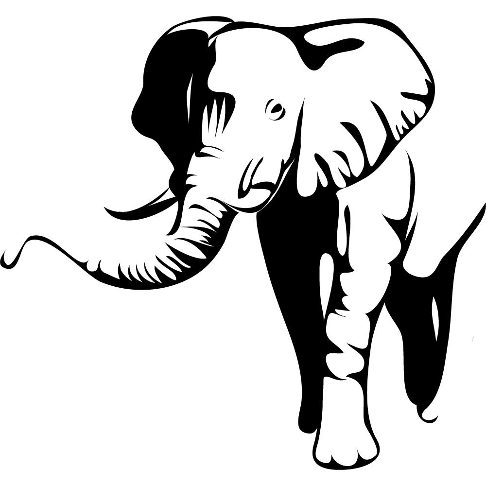 Wandtattoos folies : Wandtattoo Elefant