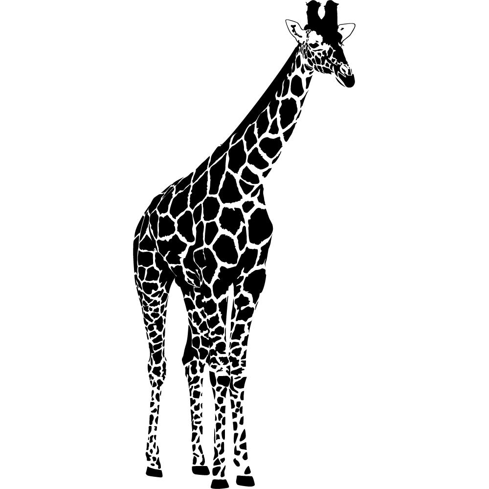 wandtattoos folies wandtattoo giraffe. Black Bedroom Furniture Sets. Home Design Ideas